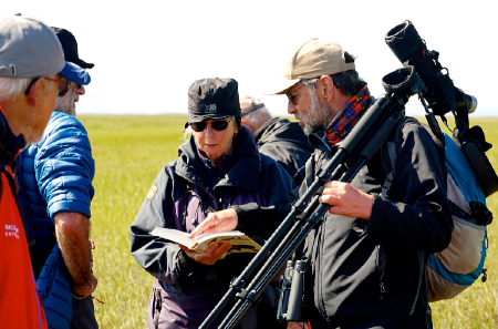Christoph Zoeckler and travellers searching for Spoon-billed Sandpipers with Heritage Expeditions