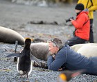 Macquarie Island Expedition: Galapagos of the Southern Ocean 11 Dec 2020