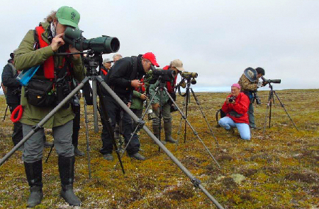 Searching for Spoon-billed Sandpipers in Kamchatka with Heritage Expeditions