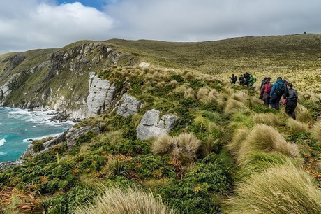 Expeditioners explore the Subantarctic Islands with Heritage Expeditions