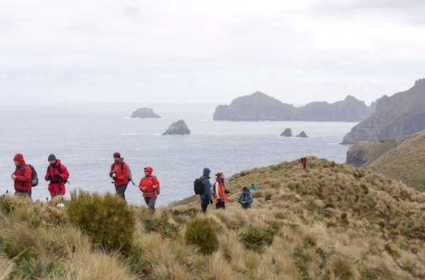 © SBlanc walking the ridgeline Campbell Island