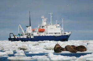 Wrangel Island: Across the Top of the World 15 August 2016