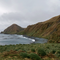 Sandy Bay Macquarie Island