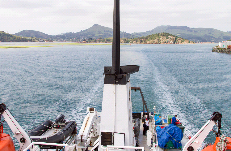 (c) ABreniere 1363 Departing Otago Harbour